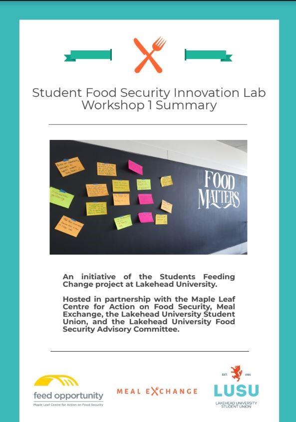 LU workshop summary cover new.jpg