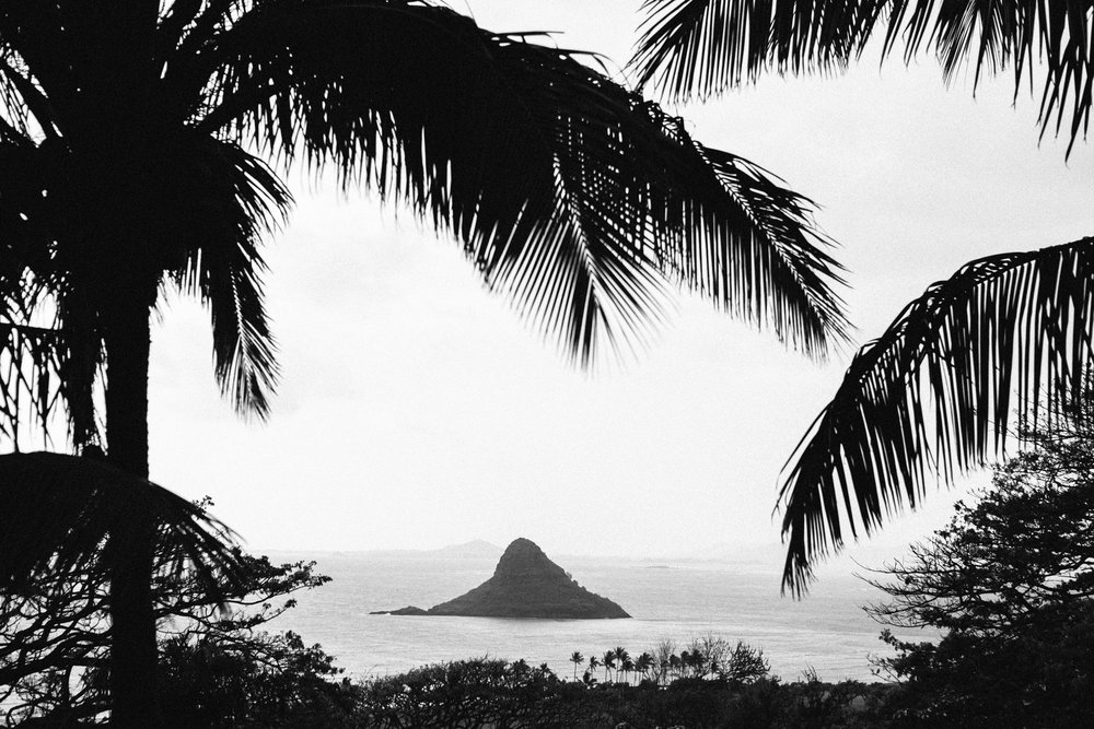024-MICHELLEMISHINA_OAHU.jpg