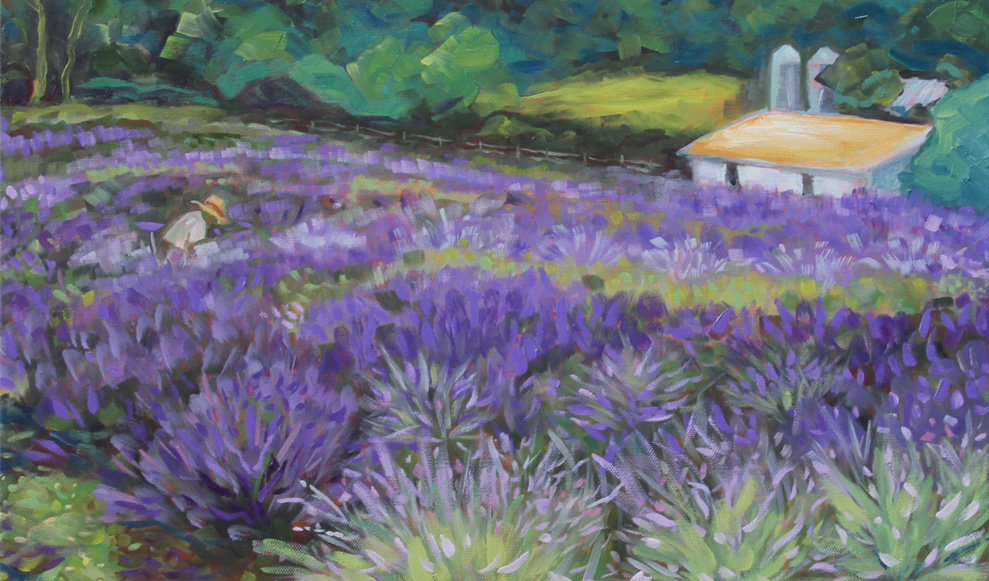 Rufo's Lavender © Laurie Rubinetti
