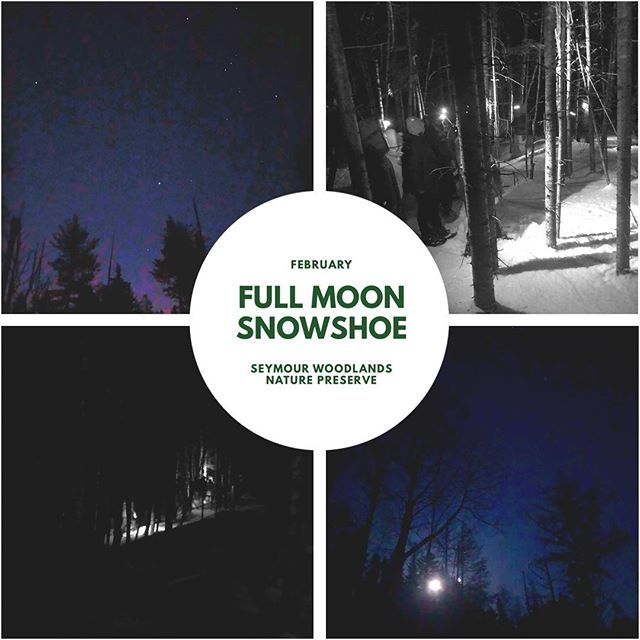 thanks to everyone who came out to the Full Moon Snowshoe with the @naturetrustnb! Stay tuned for our March and April event locations! 🌚 #GTFONB #exploreNB
