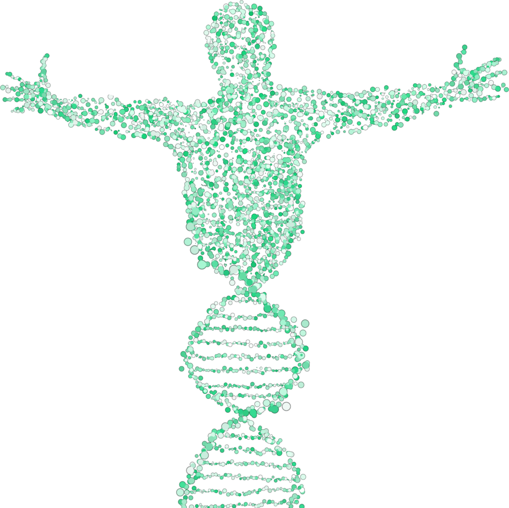 genetic-testing-naturopathic-specialists.png
