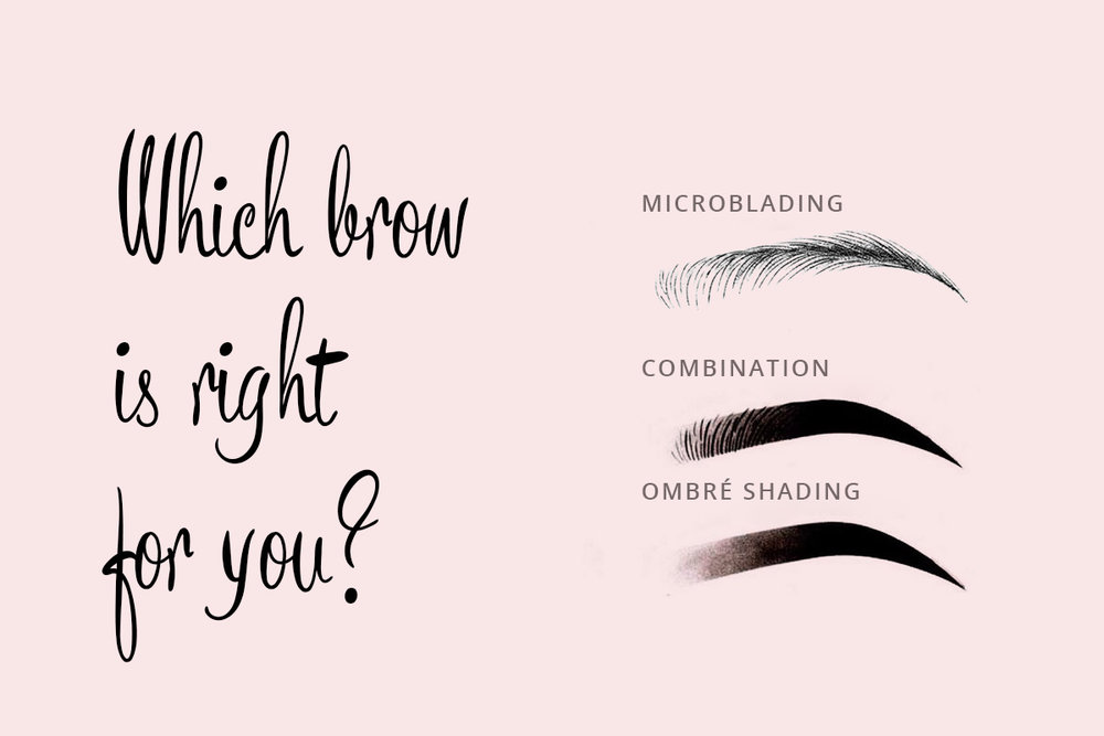 what-brow-graphic2.jpg