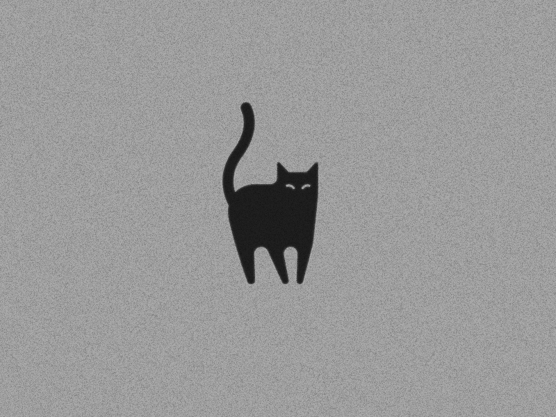 dribbbcat.jpg