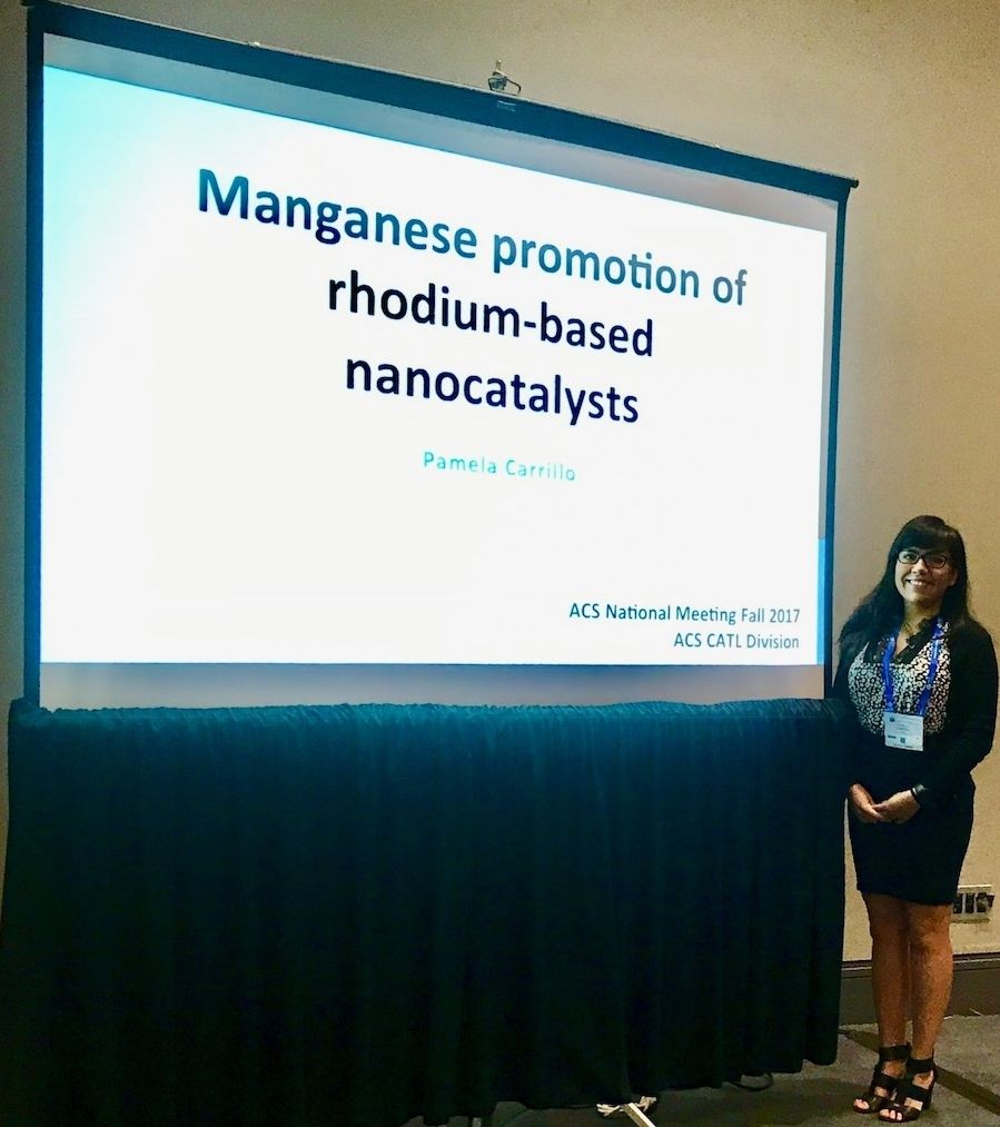 08/21/2017 - Pamela attended the 254th ACS National Fall Meeting at Washington D.C., where she gave an oral presentation.