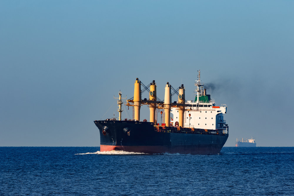 Bulk and General Cargo Ships