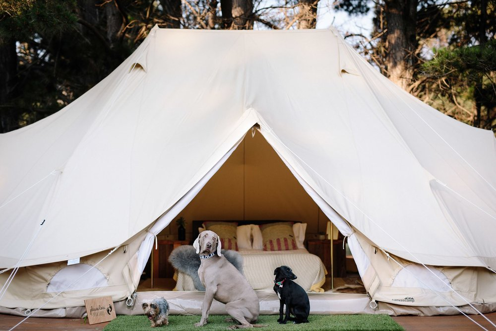 Yallingup Lodge Spa Retreat WA.jpg