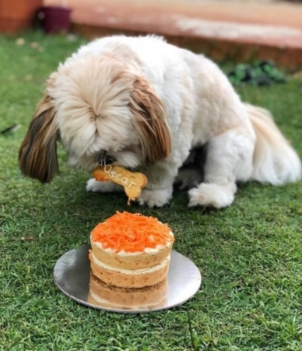 Frankie_Loves_barkery_dog_treats.jpg