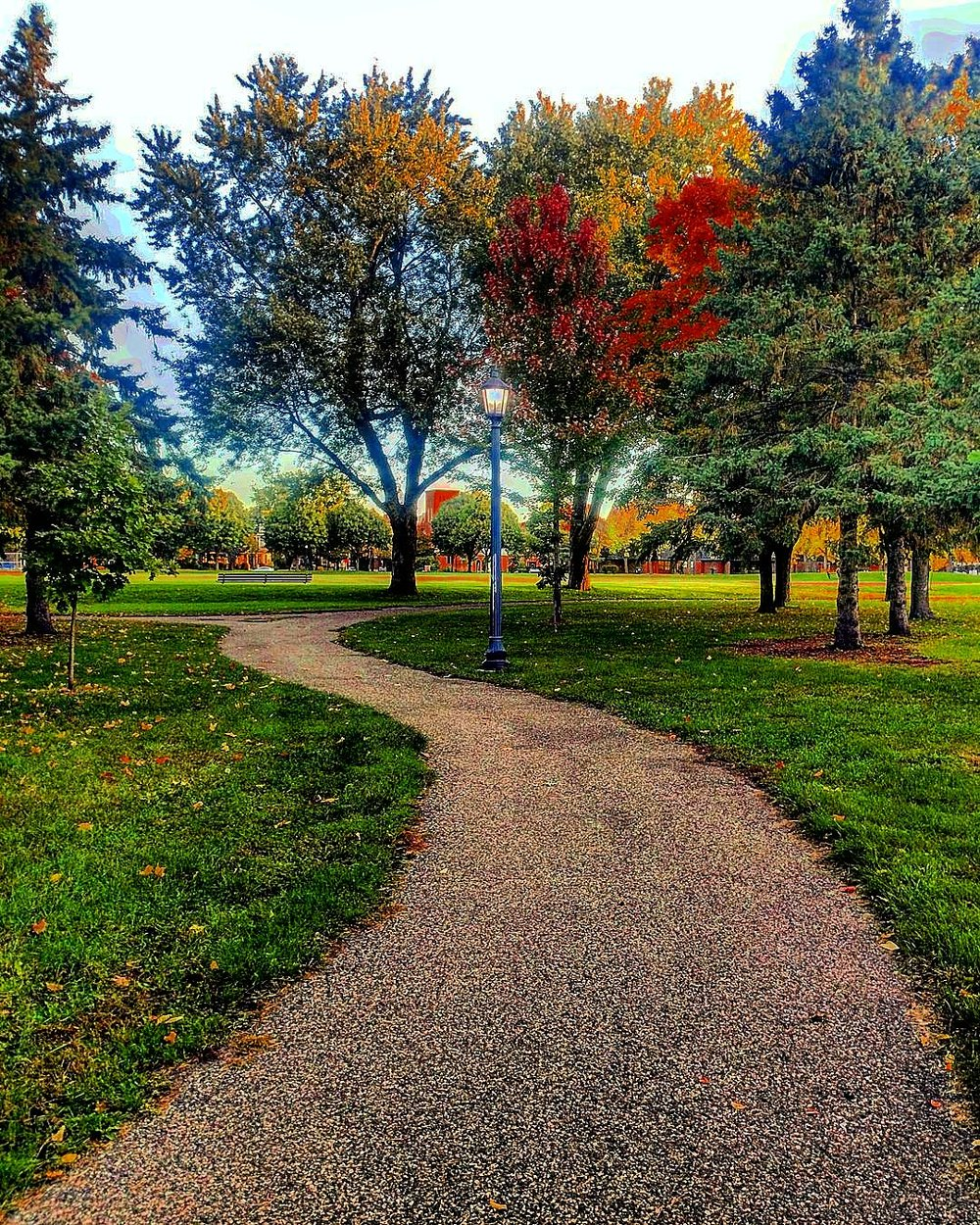 The path home, Logan Park, Northeast Minneapolis.