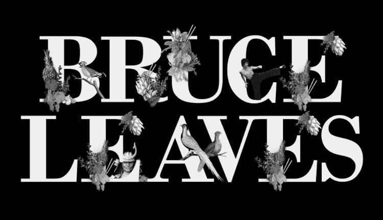 Bruce Leaves