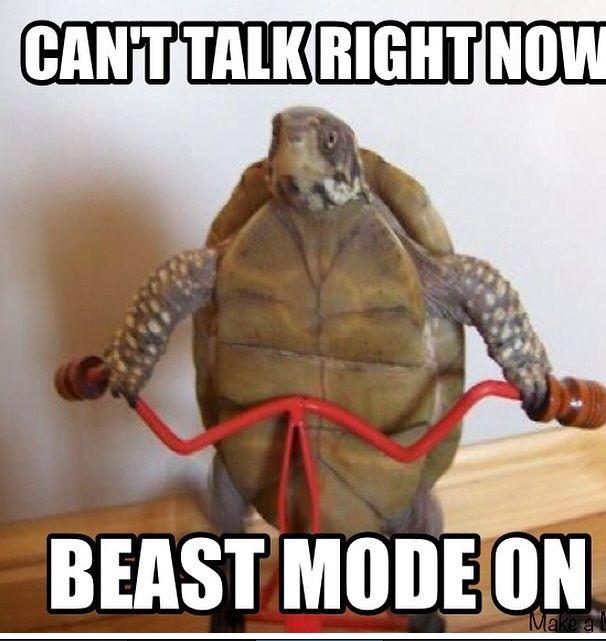 beast mode on.jpg