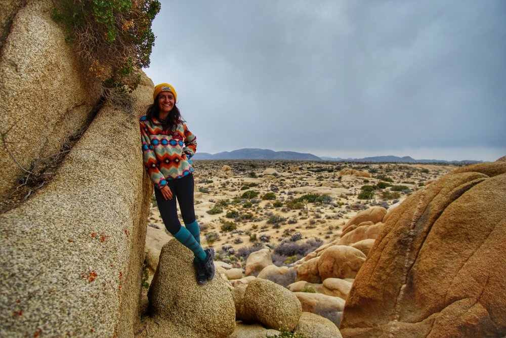 During a less than 24 hour visit to Joshua Tree in December