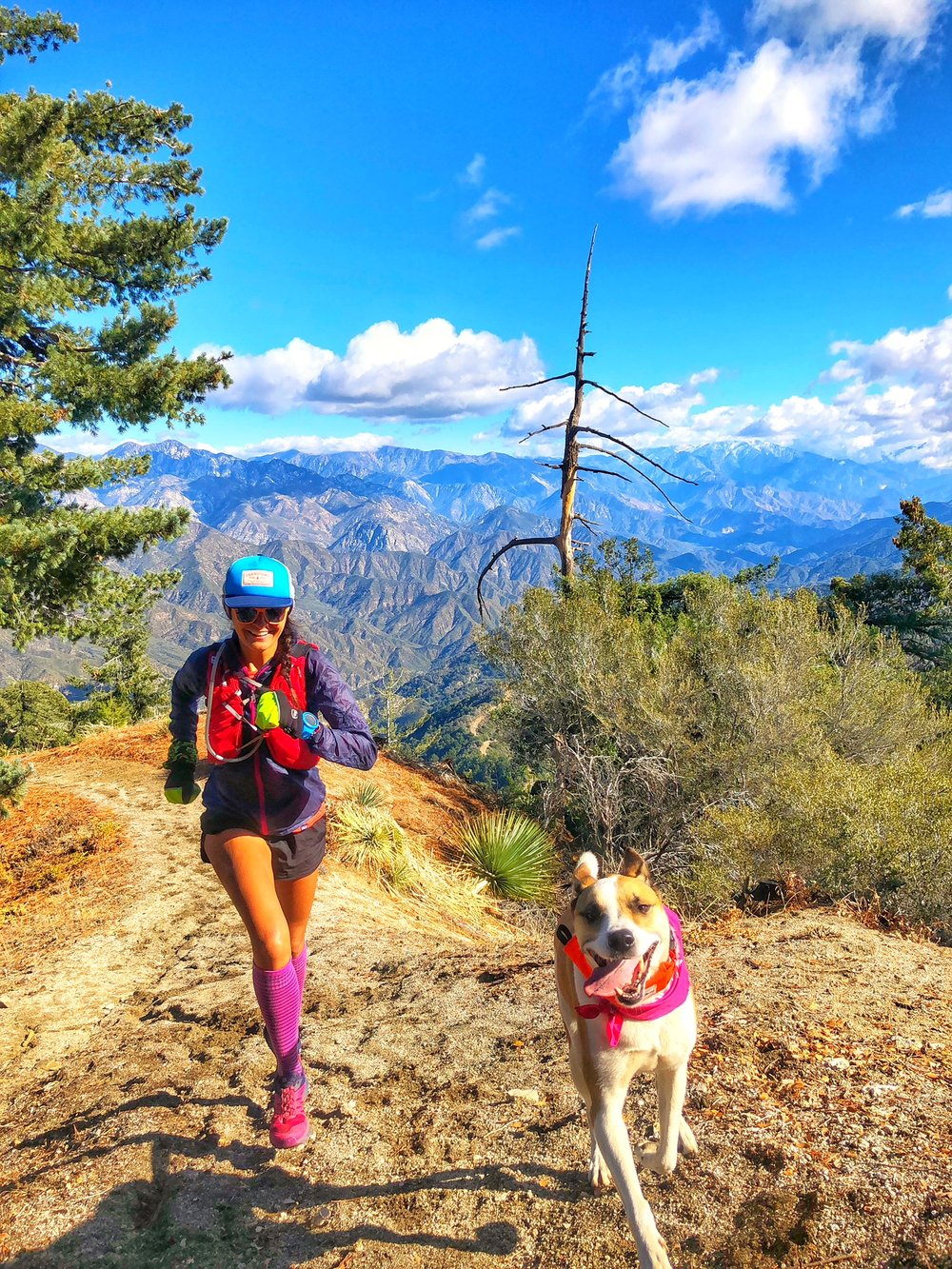Mt Wilson: - Mt Wilson: Starting from the base at Lizzie's trail Inn or you can opt to start at Chantry Flats. It's a choose your own adventure as the many little trails connect to the main trail. Some favorites are Joan's Peak, Hastings Ridge, Rim Trail).