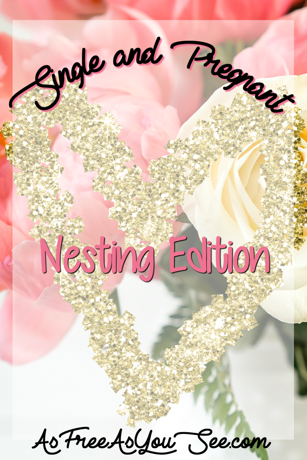 Single and Pregnant: Nesting Edition