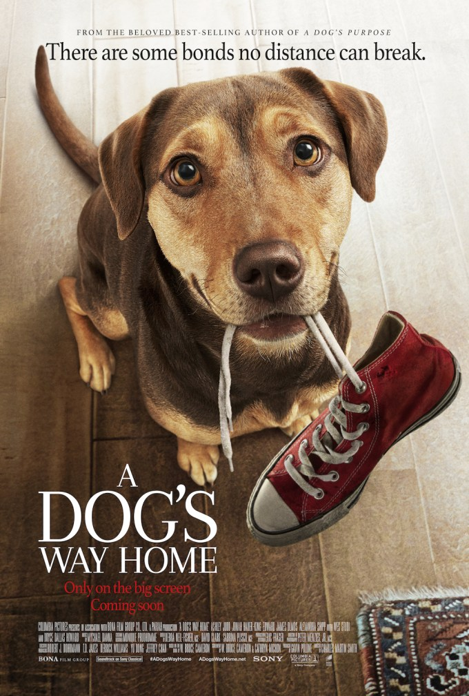 A-Dogs-Way-Home-Poster.jpg