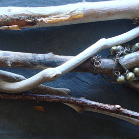 Precious Twigs -