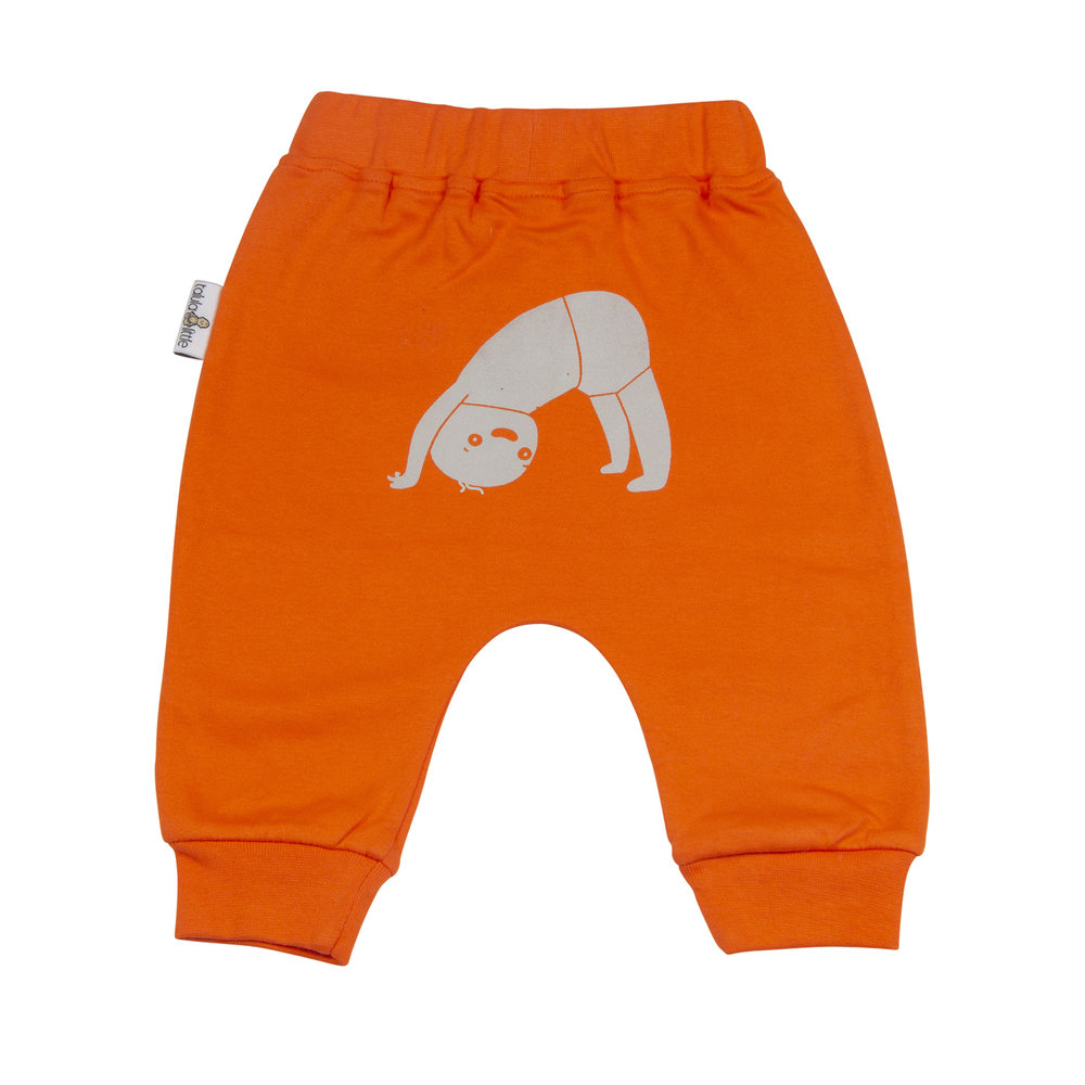 Harrie Harems - Downdog - Orange (back).jpg
