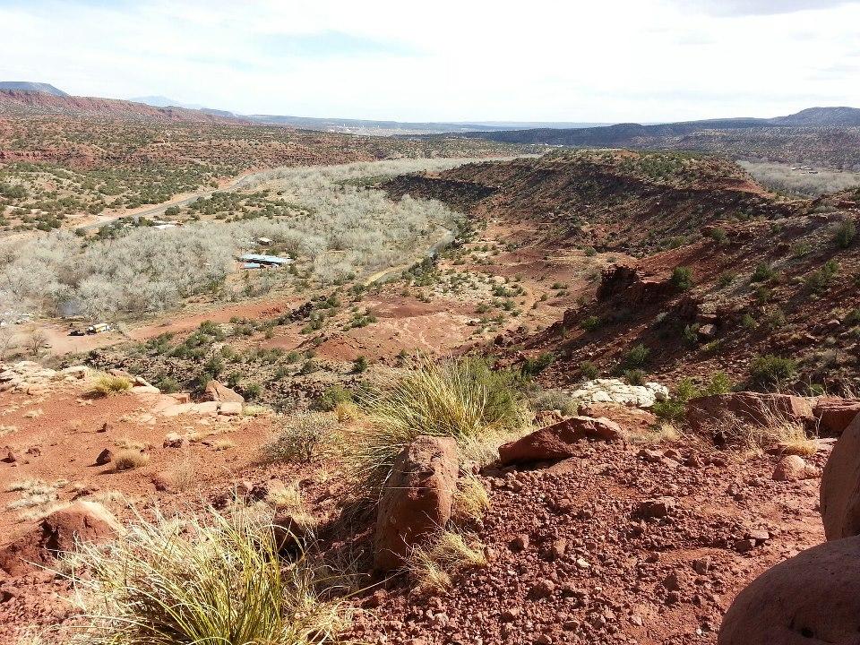 The Mesa View