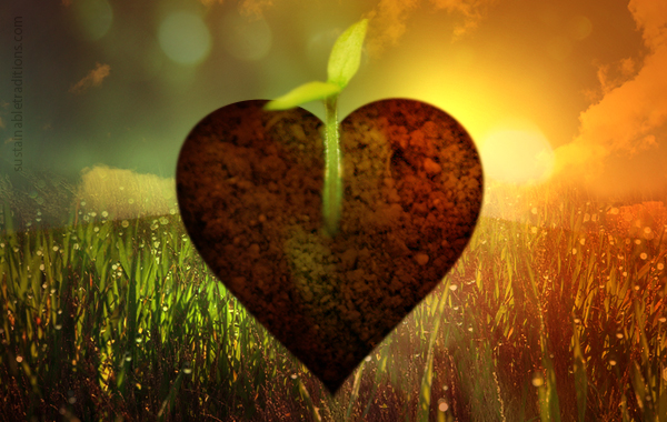 soil-of-your-heart