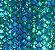 fish scales