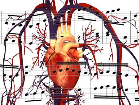human_heart-soundctrl-com