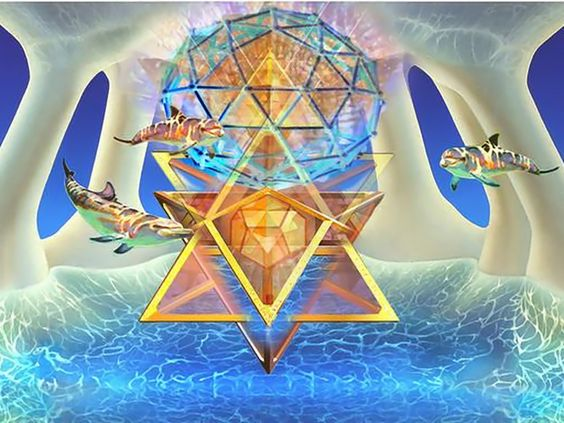 dolphins-and-merkabas