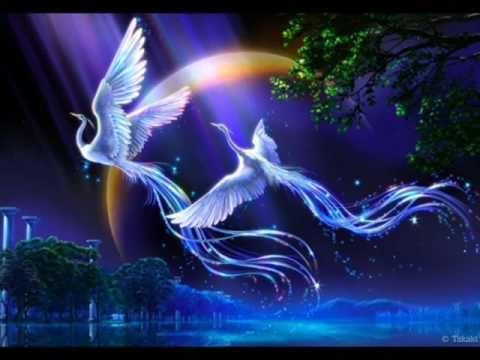 beautiful-fantasy-art-phoenix-bird.jpg