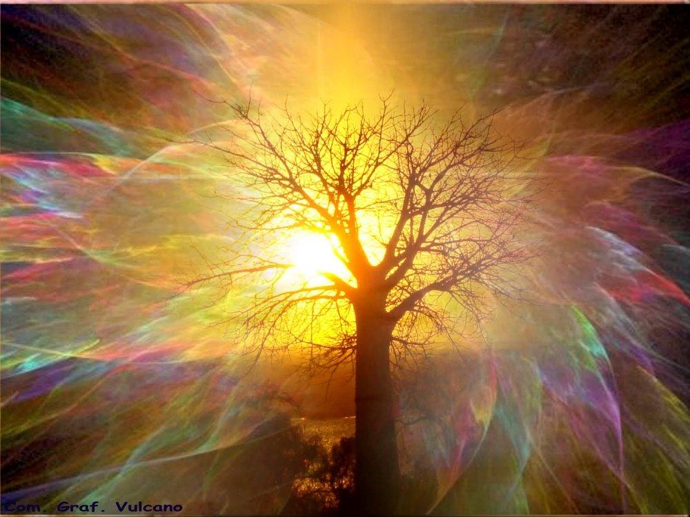 Let Your Radiance Shine Unrestricted <3