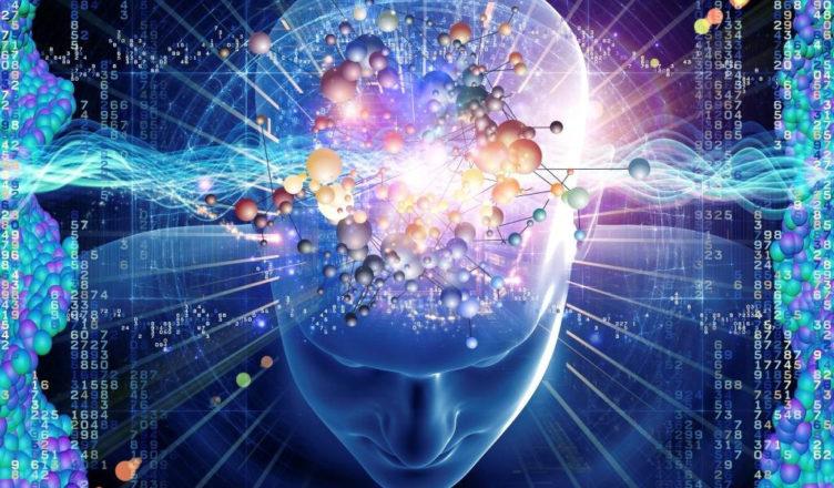 cerebro-1-752x440.jpg