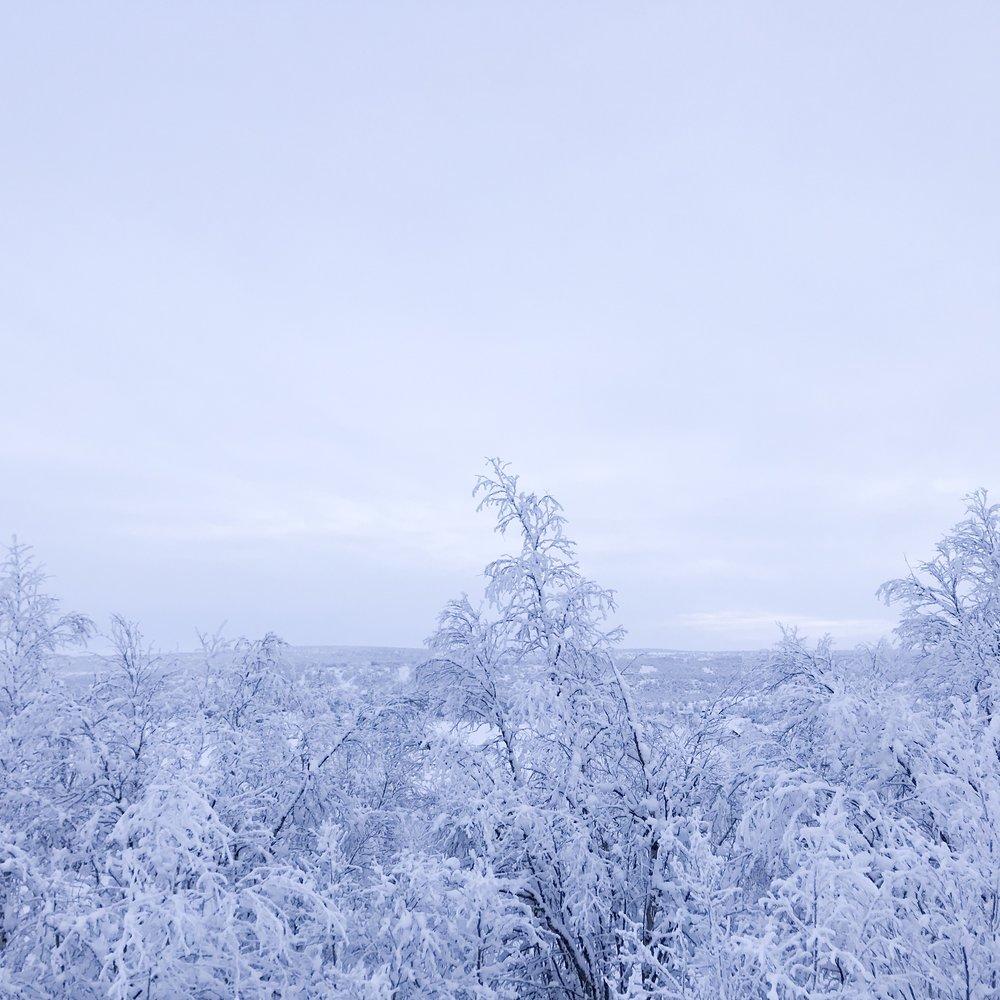 Winter scenery from Kautokeino, Norway.