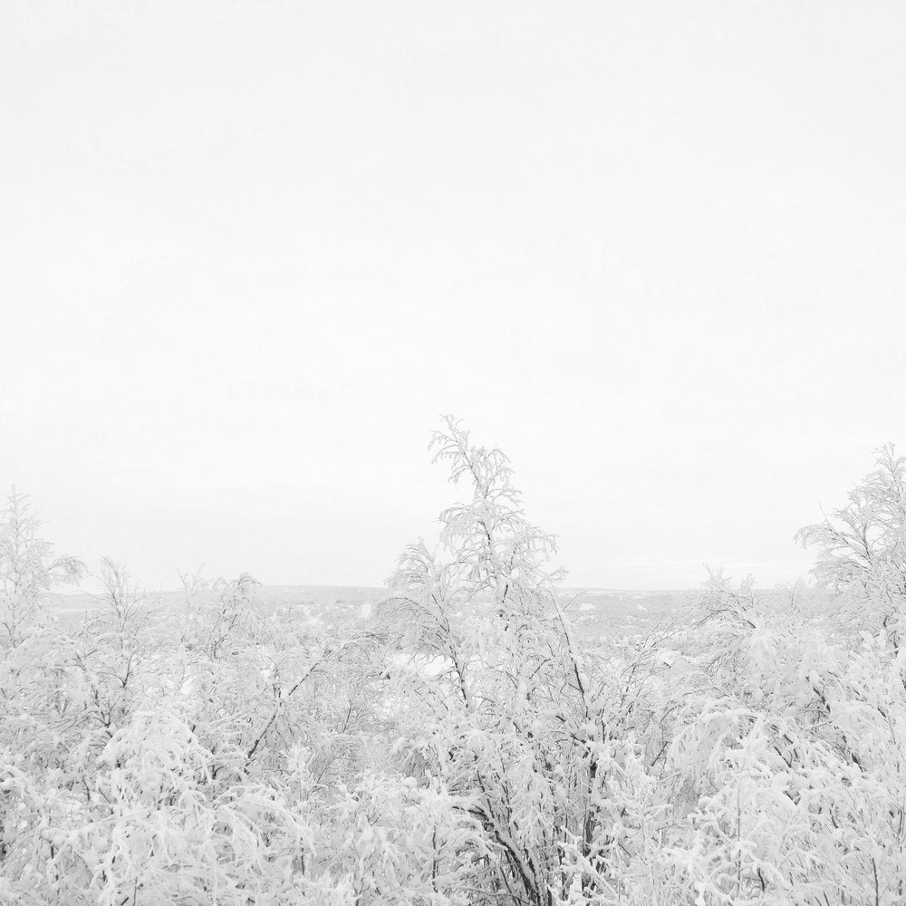 Winter scenery in Kautokeino, Norway.