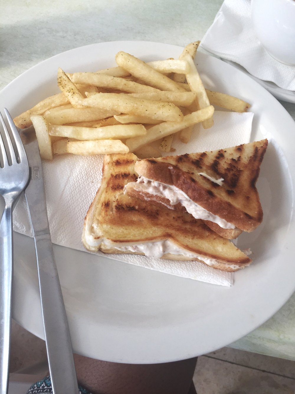 Toasted Sandwich and Fries