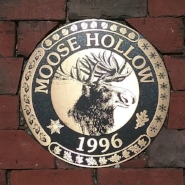 moose hollow medallion