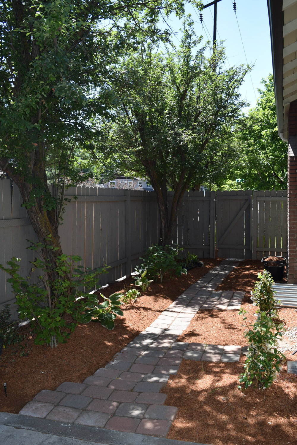 Landscaped Sideyard