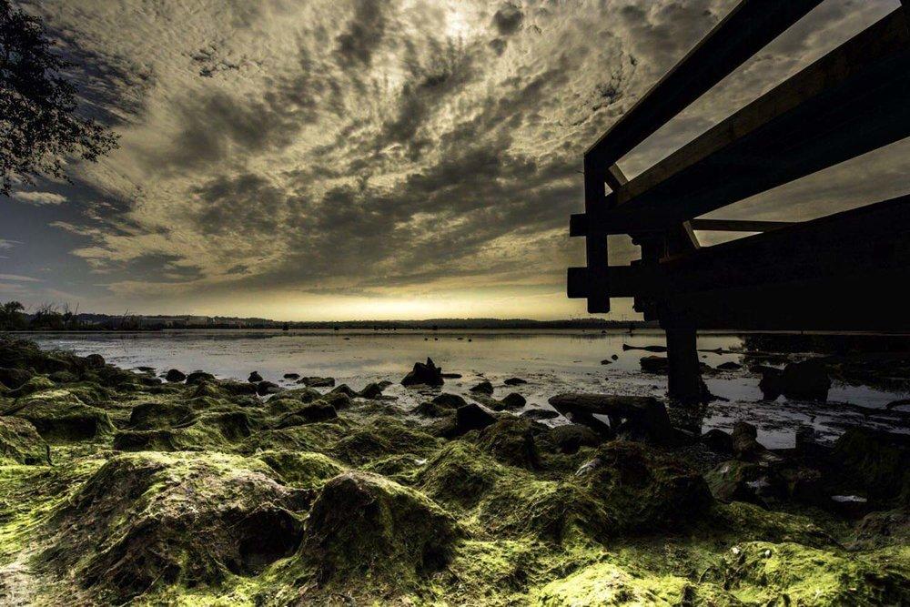 Landscape architecture Pierre Rizzo-24.jpg