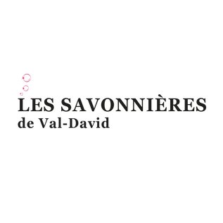 Savonnières Val-David Logo.png