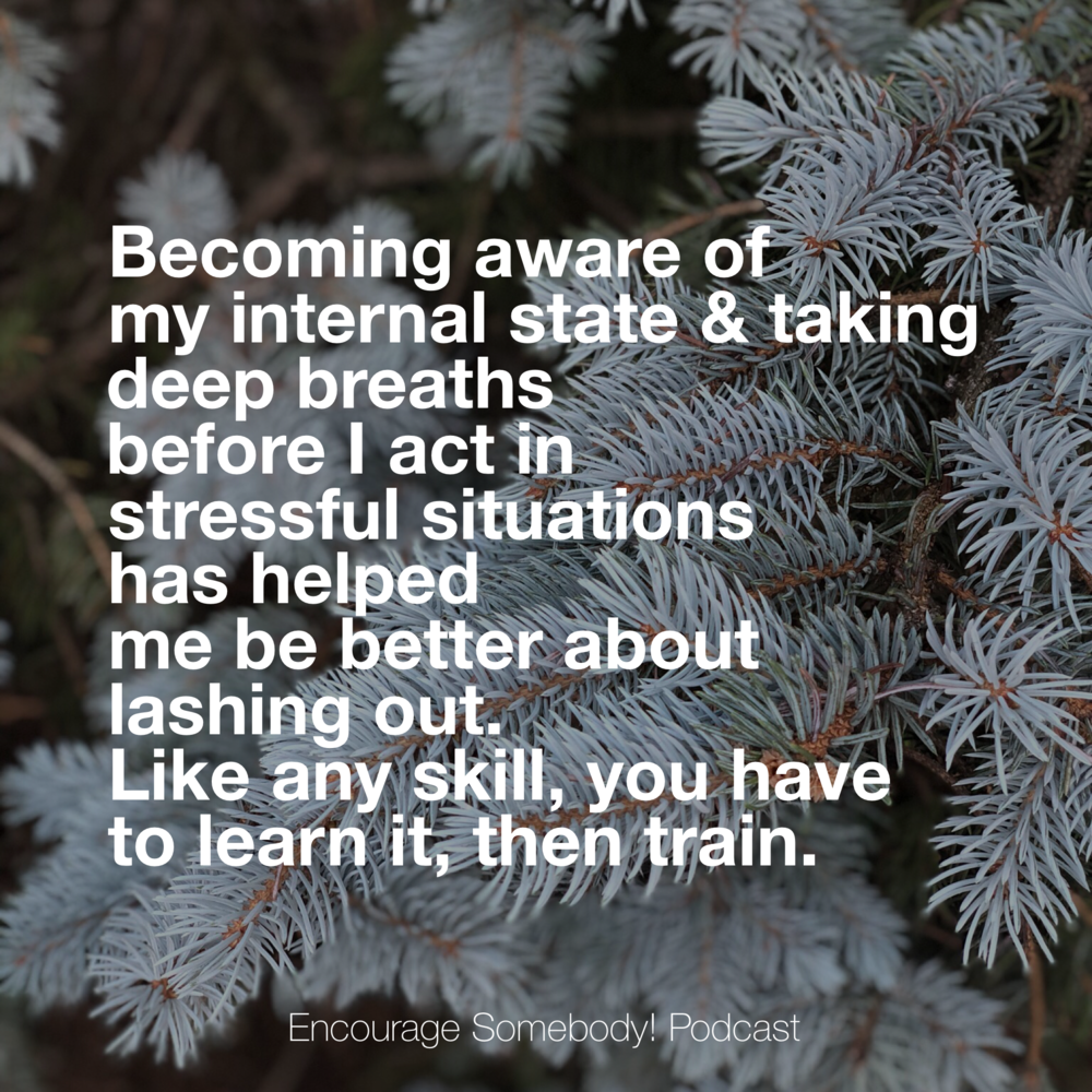 practicing-stillness-learn-train.PNG