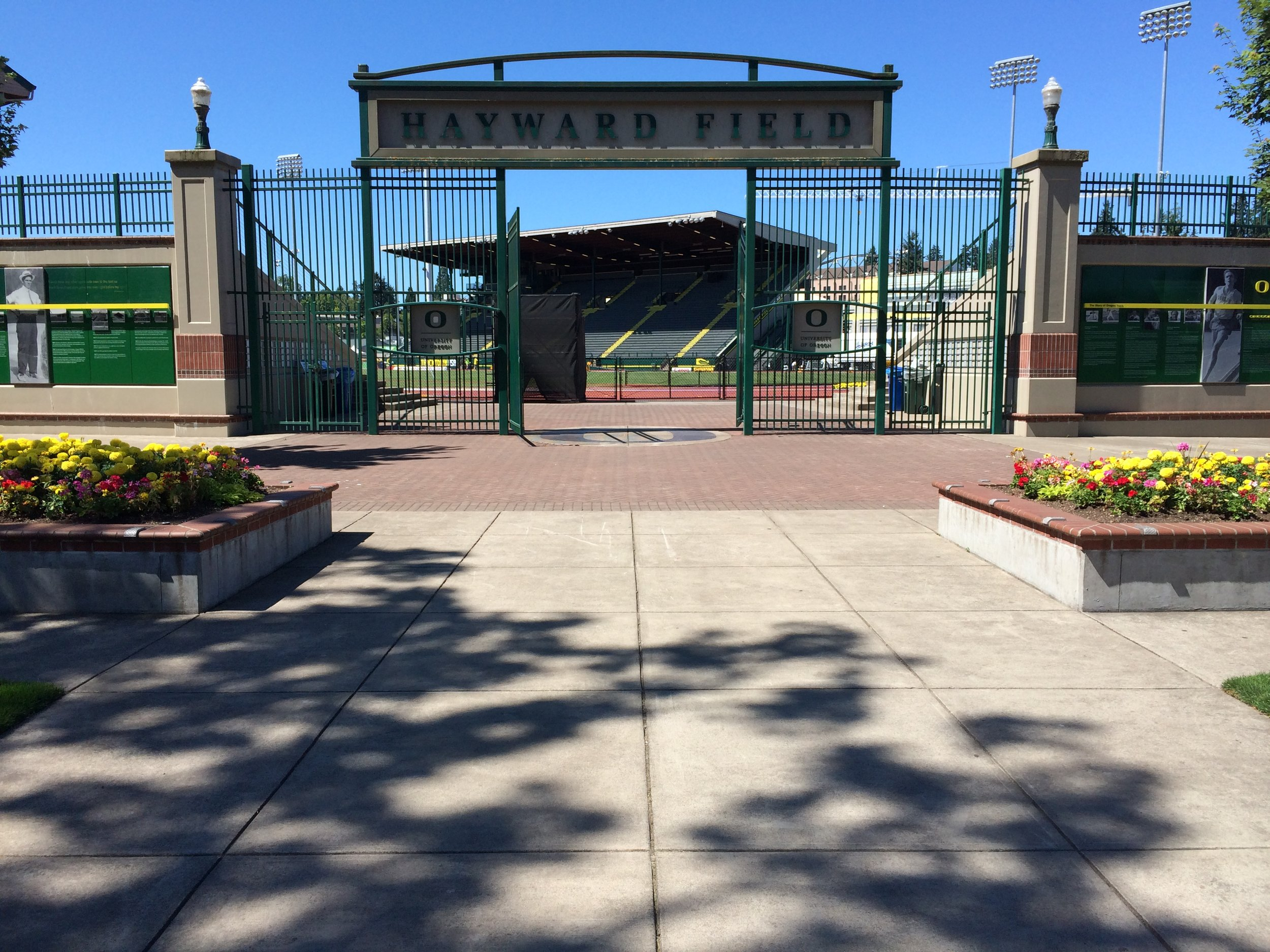 Hayward Field, site of the 2014 world juniors