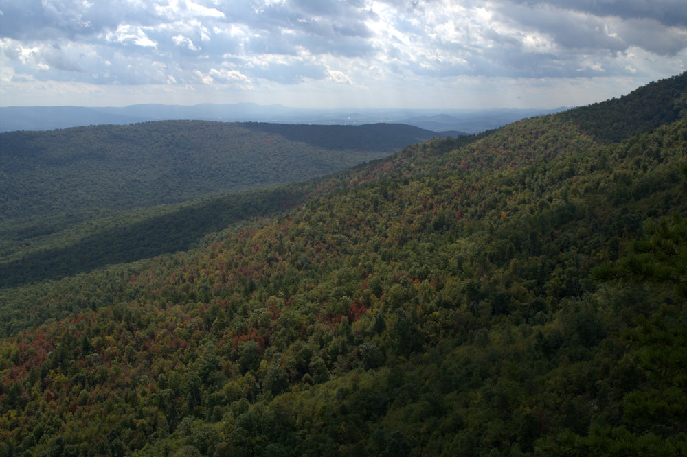Drilling Ban in George Washington National Forest
