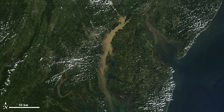 This photo (courtesy of Google) depicts the sediment clouds in the Susquehanna River leading into the Chesapeake Bay following Tropical Storm Lee.