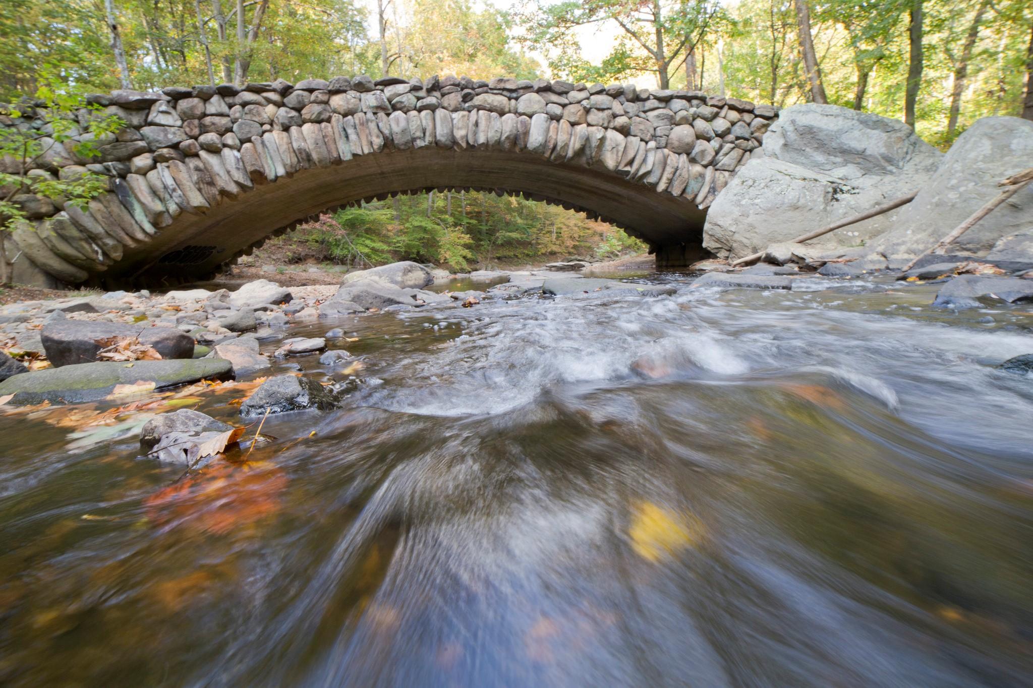 member highlight rock creek conservancy choose clean water coalition