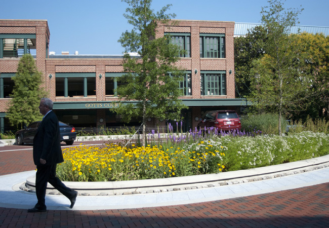Photo courtesy of  Annapolis Landscape Architects