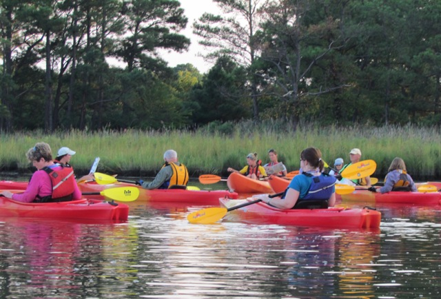 Take a guided kayak tour!