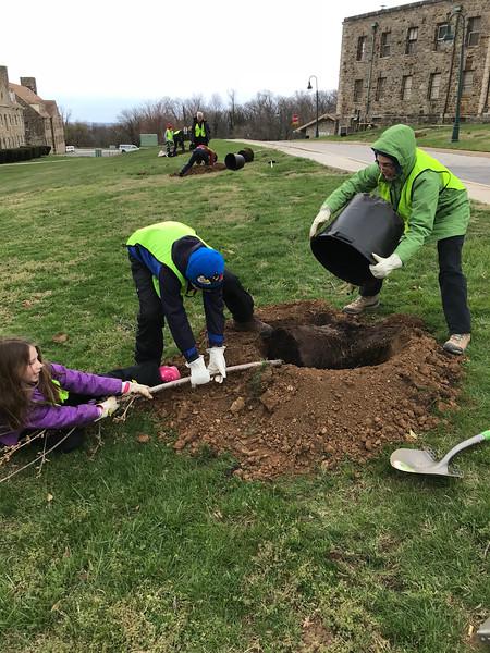 Patapsco Heritage _ tree planting.png