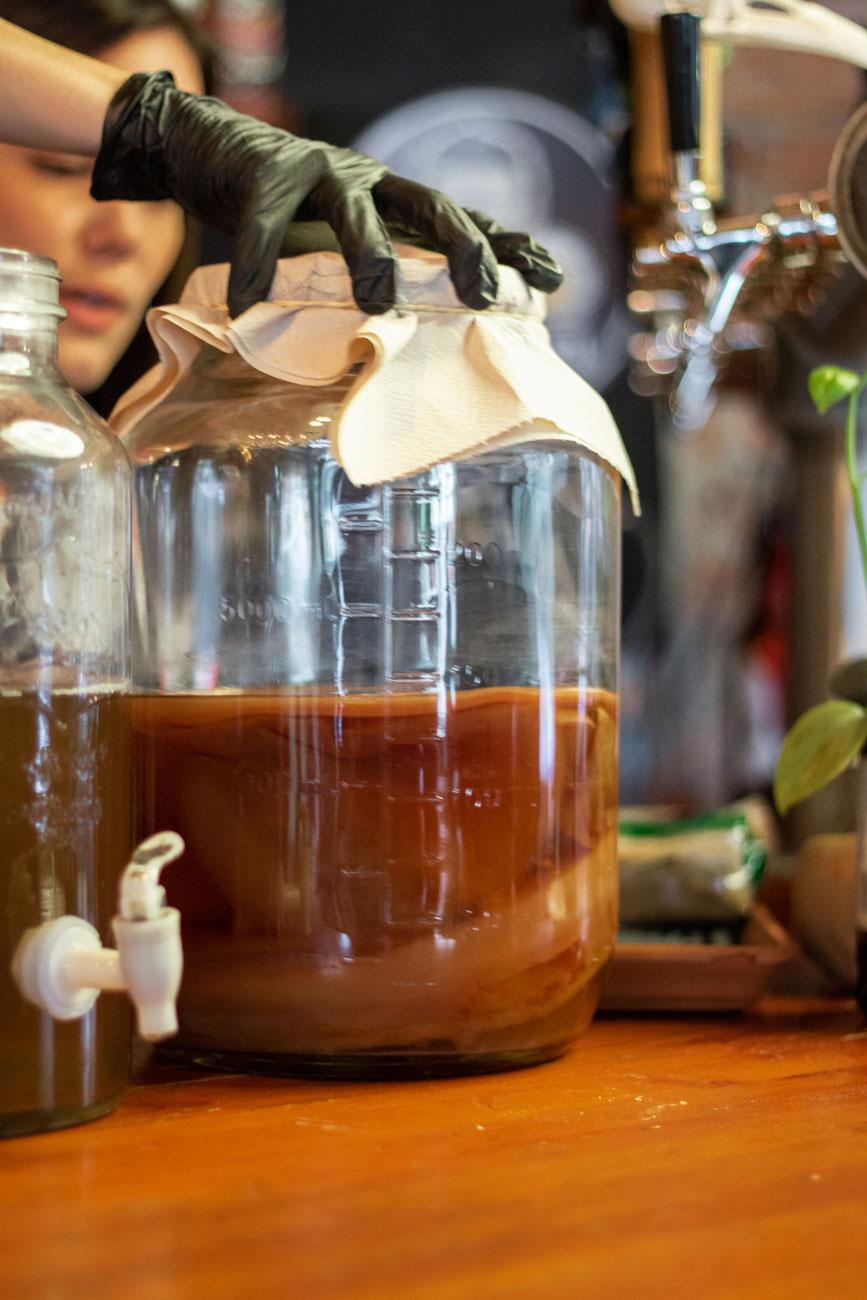 Scoby: el encargado de fermentar la kombucha de manera 100% natural al combinarse con Zukra orgánico.
