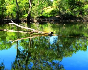 shadow-creeks