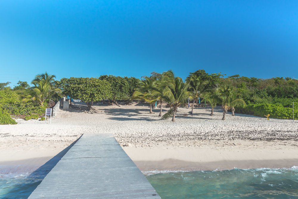 Spotts-Beach-7.jpg