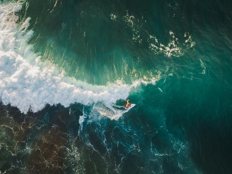 surfing_mariners.jpg