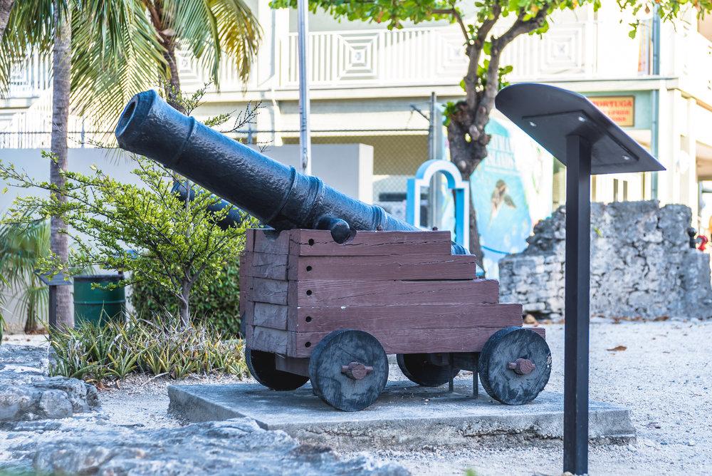 Fort George George Town