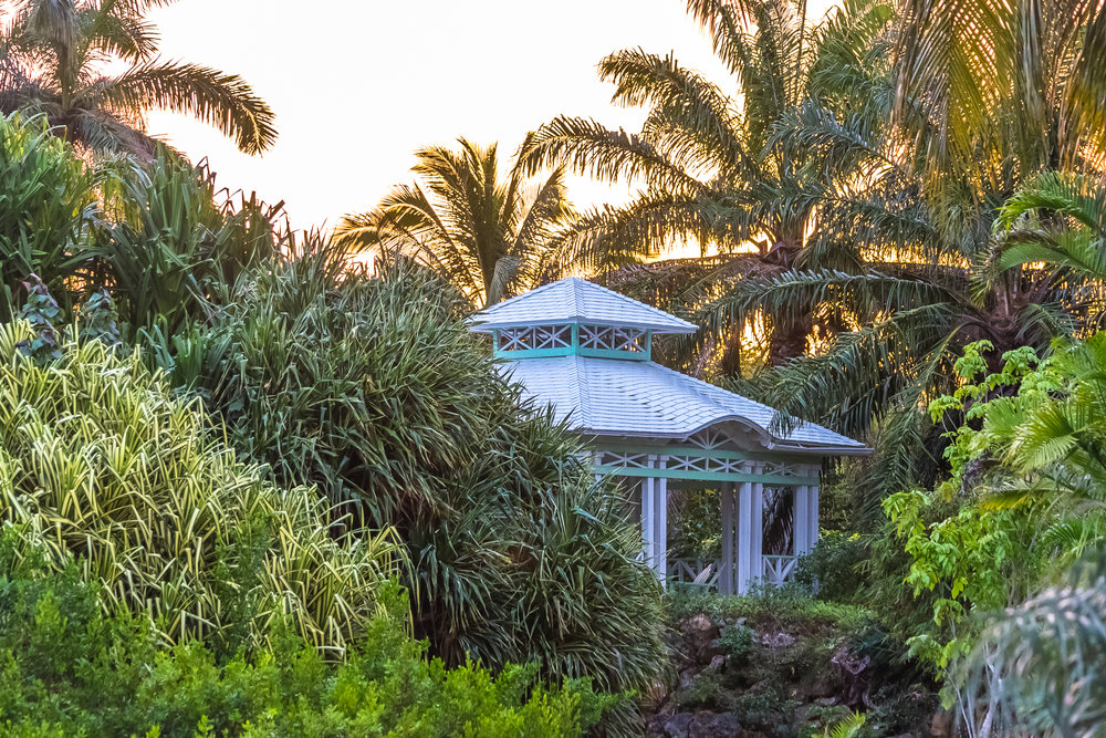 Queen Elisabeth | Botanic Park | Grand Cayman