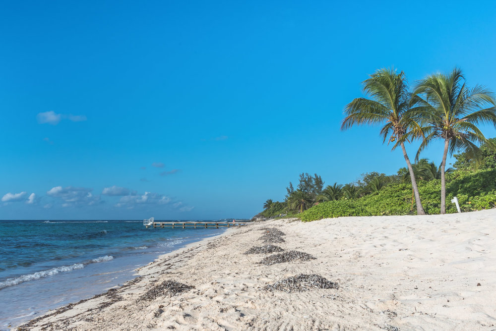 Spotts-Beach-1.jpg